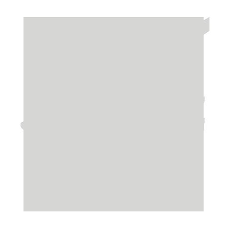 NavidNik_Logo